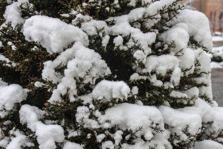 outdoors snow isolate background Stok Fotoğraf - 132405098