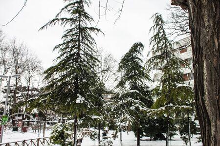outdoors snow isolate background Stok Fotoğraf - 132405099