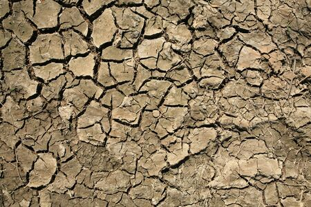 Detailed texture: broke dry soil background photo