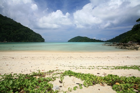Travel background  beautiful tropical beach against blue sky at Surin islands national park, Thailand Stock Photo - 12686125