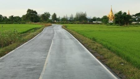 Transportation  empty wet street to gold pagoda Stock Photo - 13683627