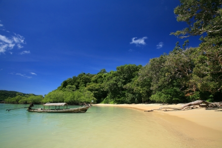 Long-tailed boat parking near beach and mangrove forest at Surin islands national park, Thailand photo