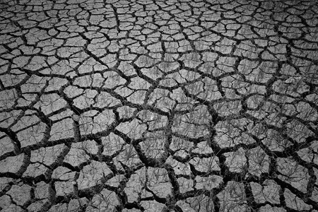 Closeup of dry cracked earth with alive grass photo