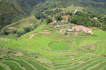 Aerial view of green terraced rice fields and building on the valley at Cat Cat village in Sapa, Vietnam photo
