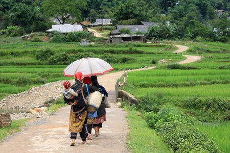 Hill tribes walk up to their village near terraced rice fields  Red Dao Minority are the 9th largest ethnic group in Vietnam