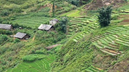 Green terraced rice fields with houses on the mountain slope in Sapa, Vietnam photo
