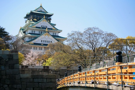 Osaka Castle with cherry blossom in Osaka, Japan