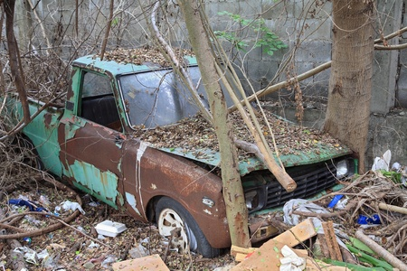 Abandon old pickup truck  photo