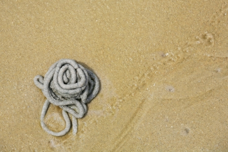 lugworm: Lug worm cast on the sand by aerial view