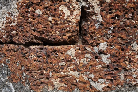 Closeup texture of red laterite stone brick wall  photo