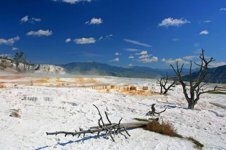 Upper travertine terrace of Mammoth Hot Springs against blue sky in Yellowstone National Park in Wyoming, USA