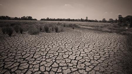 World crisis  Dry crack earth at farm photo