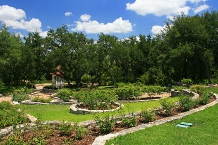 Austin Zilker Taniguchi Gardens in Austin, Texas, USA