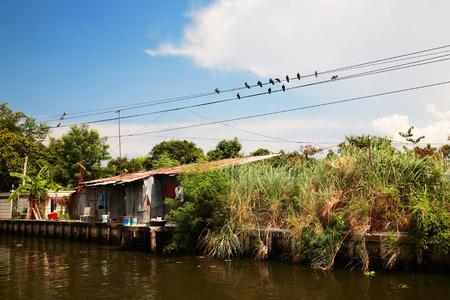 slum: Slum Thai house near river or canal