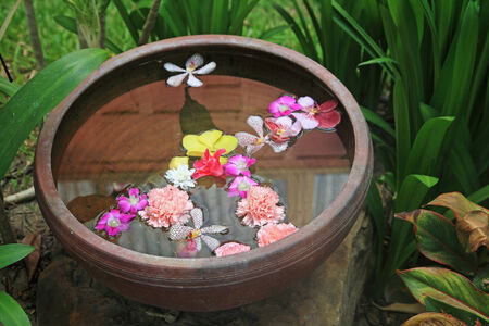 flowers floating on water in terracotta pots at the luxury garden photo
