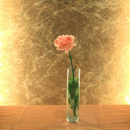 Pink carnation flower with golden background decorated for wedding reception photo