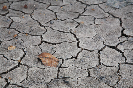barrenness: dry brown leaf on the cracked earth, Global warming Stock Photo