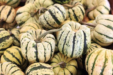 hard sell: mini white pumpkins selling at Thai market place Stock Photo