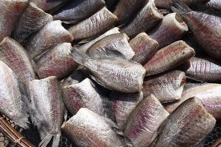 fish selling: Dried salted gourami fish selling at thai market