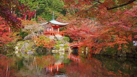 coloful: Daigoji temple with coloful maple trees at Autumn in Kyoto, Japan