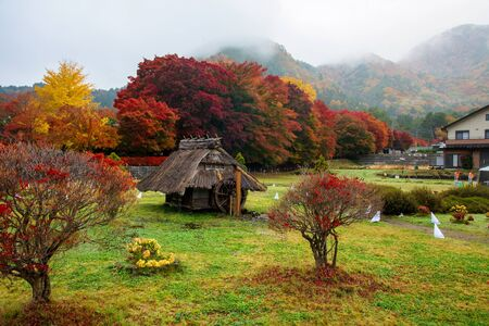 momiji: Little cabin near maple corridor or Momiji Kairo at autumn in Kawaguchiko, Japan