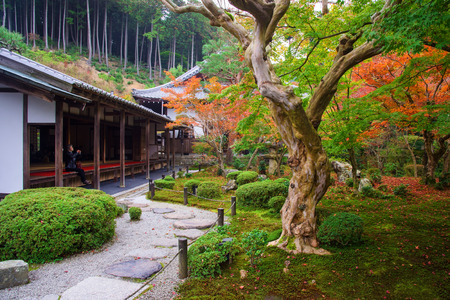 temple tank: KYOTO, JAPAN - NOVEMBER 13, 2015: Unidentified woman in Enkoji temple to enjoy Autumn colorful Japanese garden. Here is located in northern Kyoto and very famous during fall colors in Autumn.