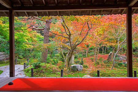 temple tank: Enkoji temple with falls or autumn garden in Kyoto, Japan
