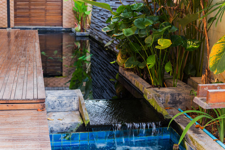 Luxury garden, decorated pond for house interior