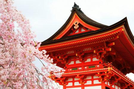 Santuario con flor de cerezo en el templo Kizomizu en Kyoto, Japón