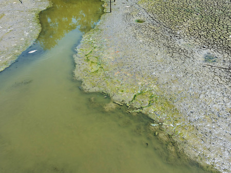 runoff: Drought pond with less water and cracked dirt, Natural disaster