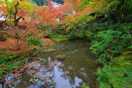 Autumn foliage around the pond at Enkoji temple, Kyoto, Japan Editorial