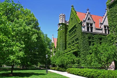 Sale in divisa di Ivy contro il cielo blu del campus dell'Università di Chicago Archivio Fotografico - 66713411