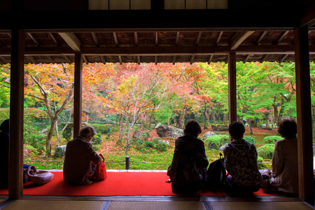 japanese fall foliage: Visitors sit in Enkoji temple to see fall Japanese foliage, Momiji, garden in Kyoto, Japan. Here is Rinzai Zen Sect and very famous during Autumn. Editorial