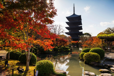 koyo: Wooden tower of Toji Temple with autumn color, Kyoto, Japan. Here is the largest temple pagoda in the country at a height of 54.8 meters. Editorial
