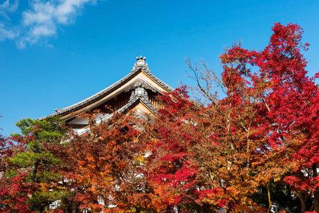 Eikando temple roof against autumn foliage and blue sky, Kyoto, Japan