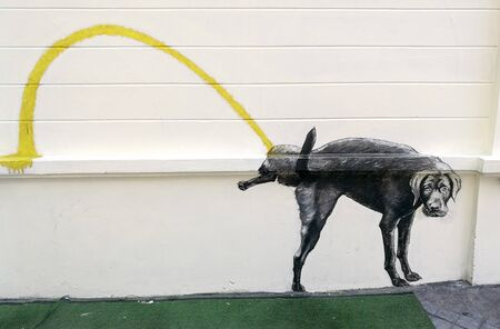 Dog pee painting at the white wall