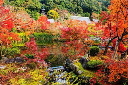 Autumn Colors in Eikando garden Stock Photo
