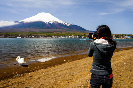 kawaguchi ko: Professional photographer shooting Mt. Fuji and swan from Yamanaka lake Stock Photo