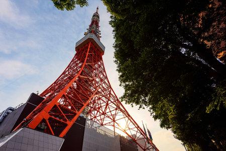 Toyko Tower Contra El Cielo Azul Por Vista De Hormiga Japón Fotos