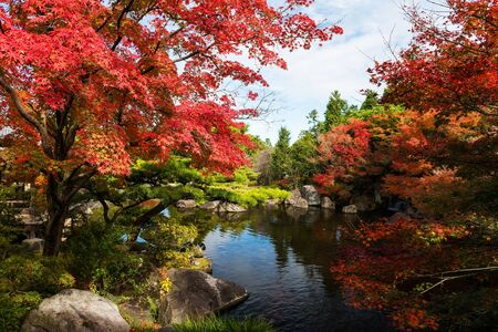 Koko-en garden with fall foliage colors near the small pond in Himeji, Japan. Here is very famous to see autumn foliage colors during November, Reklamní fotografie
