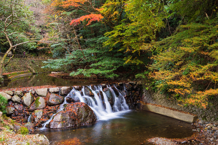 quasi: cascading stream water from Minoh (Mino-o) waterfall with autumn foliage leaf in Osaka, Japan. Stock Photo
