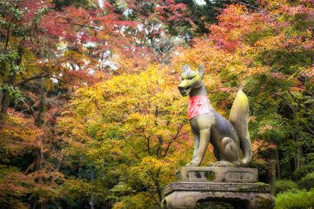 Angel Fox statue against peak autumn foliage colos at Fushimi Inari Taisha, Kyoto, Japan. Fall leaves background, Kansai travel destination.