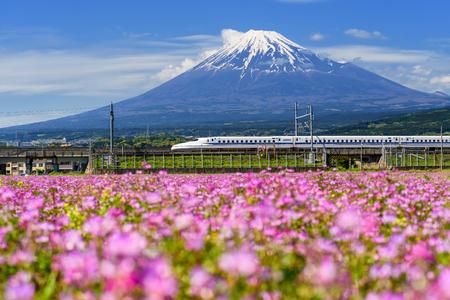SHIZUOKA JAPAN - MAY 05 2017: Shinkansen or JR Bullet train running pass through Mt. Fuji and Shibazakura at spring. Super high speed train N700 can transit between Tokyo and Osaka.