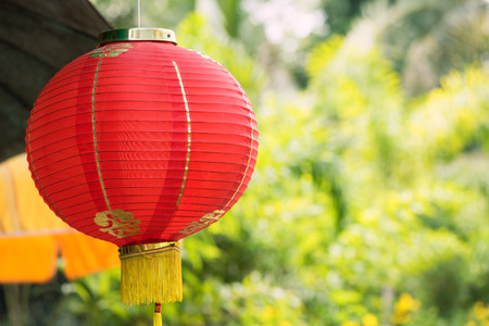 Red lantern lamp hanging at the garden with green nature bokeh background for decoration during the Chinese New Year