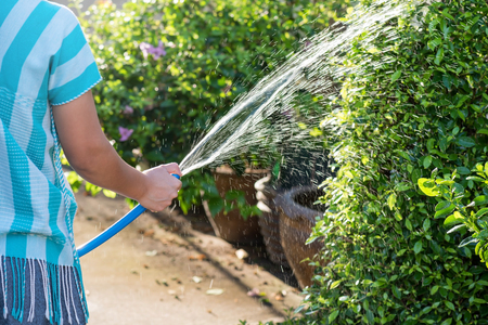 Housemaid girl hand hold blue rubber hose and close hole by thumb finger to make water spray with blurred sunlight foliage bokeh background. Garden and Housework concept.