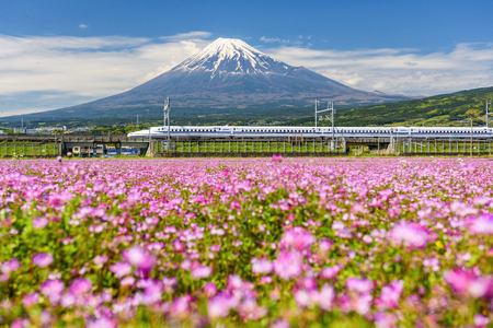 Shizuoka, Japan - May 05, 2017: Shinkansen or JR Bullet train run pass through Mount Fujisan and Shibazakura at spring. Shinkansen, Super high speed train N700 transit between Tokyo and Osaka.