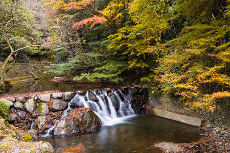 Autumn park with motion stream water from Minoh (Mino-o) waterfall with  in Osaka, Japan. 版權商用圖片