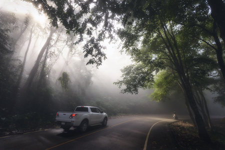 SUV pickup car vehicle driving at scenic local curve street with mist, sun rays light, and beautiful green forest. Family road trip travel to Phu Chi Fa, Chiang Rai, Thailand. Banco de Imagens
