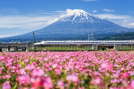 Shizuoka, Japan - May 05, 2017: JR Shinkansen train pass through mountain Fuji and Shibazakura at spring. N700 Bullet train transit between Tokyo and Osaka operated by Japan Railways company. Redakční
