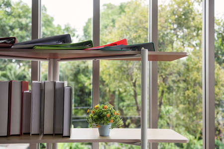 Shelf with files folder, books, and artificial flower on pot by the window with greenery tree bokeh background in office building. Concept of work information in green environment.